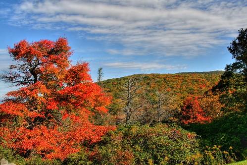 Autumn Ramping Up