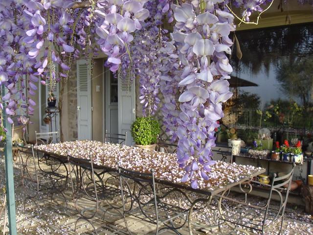 Provence-Alpes-Côte d'Azur, La Bastide d'Einesi, Vidauban, Var