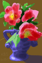 Wild Roses - June 18, 2009