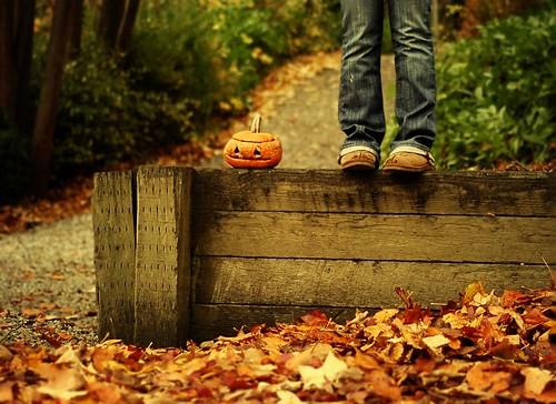 wanted: rotting pumpkins