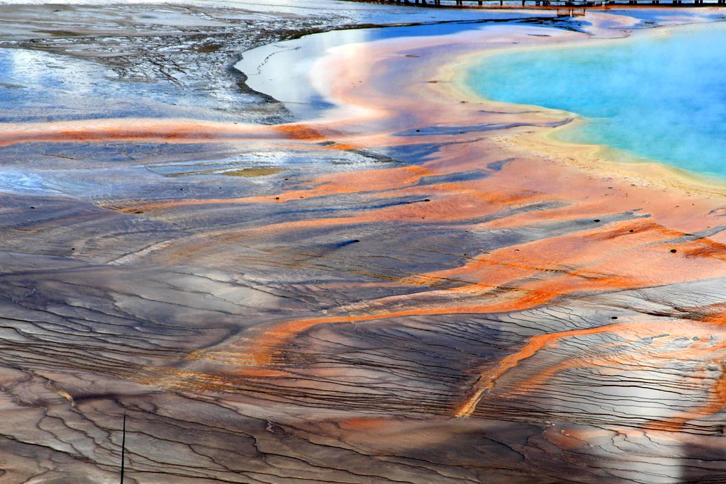 Colorful shore of the Grand Prismatic Spring, Yellowstone National Park