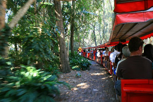 Currumbin Sanctuary Train 2