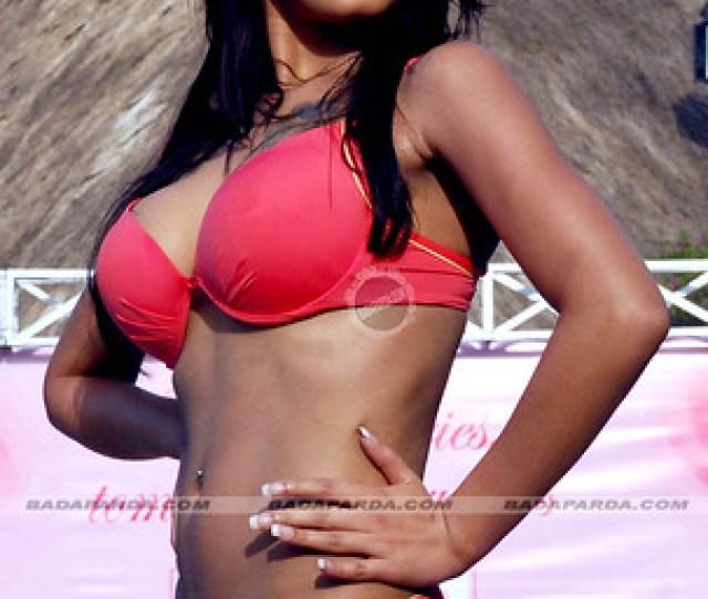 Gulabari Sananda Tilottama Bikini Babes