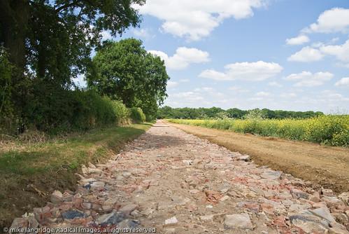 Bedfordshire - Greensand Ridge Walk _G106295