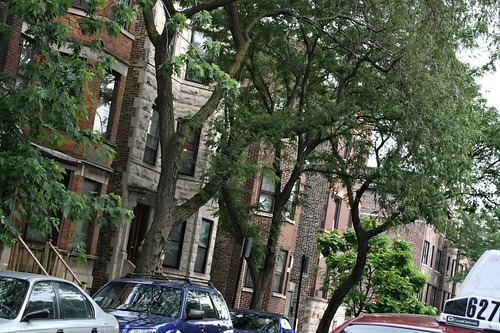 I loved all the Brownstones.