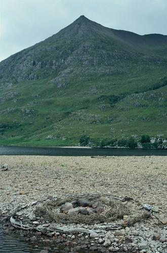 Stone and driftwood circles, An Teallach, Scotland
