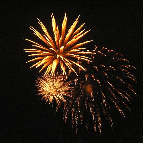 Flower Show Fireworks 09
