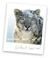 snowleopard64bitkernel