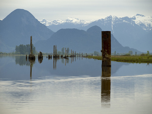 2009-05-16 Pitt River Crossing 01