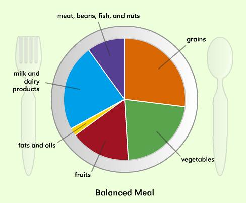 creating a balanced meal- food group plate- healthy nutrition meal planner plate