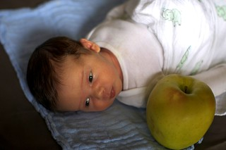 jacob and the giant apple, 2