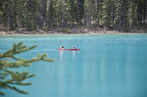Canoeing at Emerald Lake, must be a great experience with the still waters and majestic view!