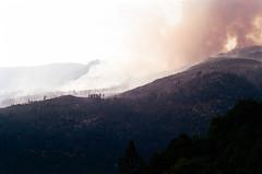 Yosemite Forest Fire