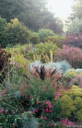 Martha Stewart Living Garden Tour