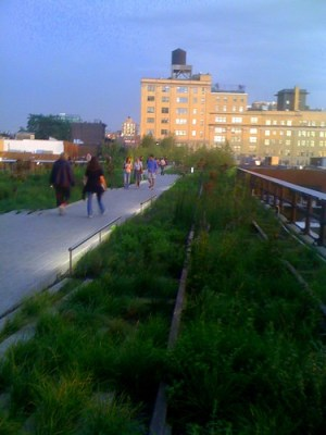 Biofriendly walkway - The High Line