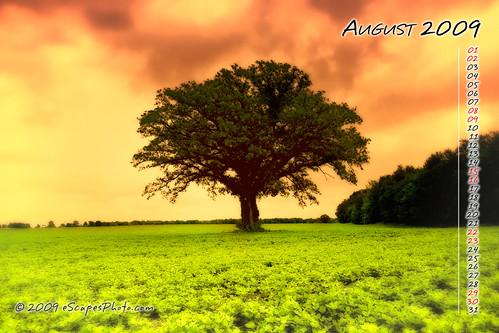 August 2009 Desktop Calendar