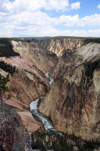 The Grand Canyon of the Yellowstone from Grand View
