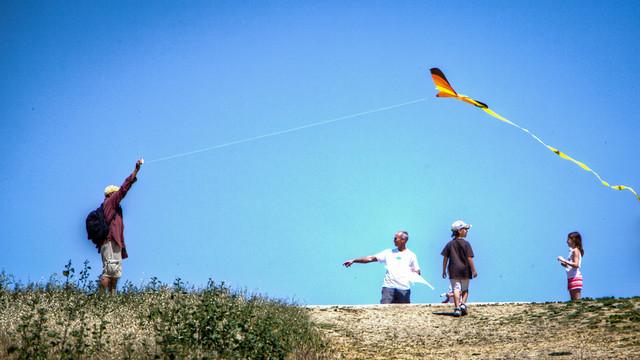 Kite Flying - Bedwell Bayfront Park - Menlo Park, CA