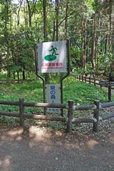 泉の森―案内看板(Signboard, Izuminomori park, Yamato, Kanagawa, Japan)