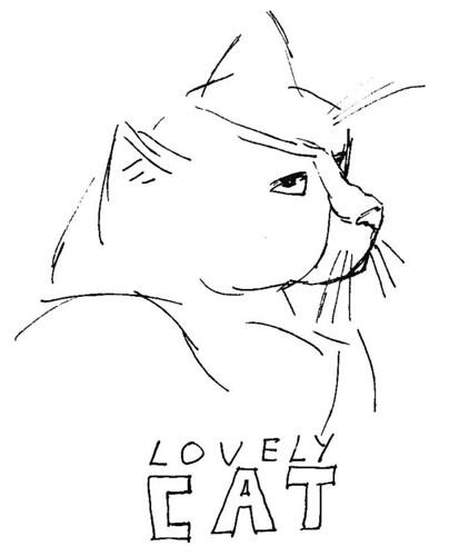 cats, part 17