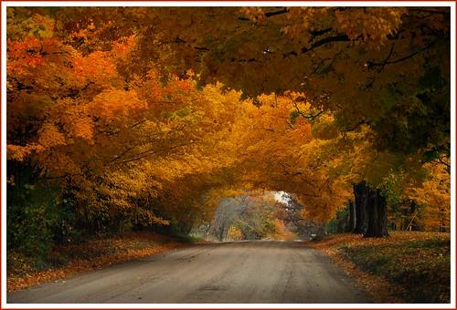 Mound Road.