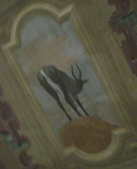 Antilope nera castello malaspina fosdinovo