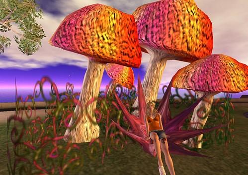 MS Main Mushroom Throne