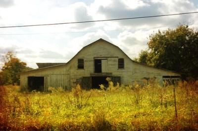 Golden Barn
