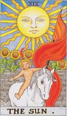 19 The Sun