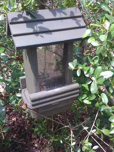 The cache was a lock-n-lock box under the feeder