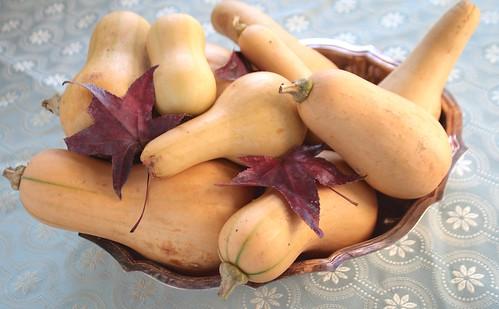 Pile o butternut squash