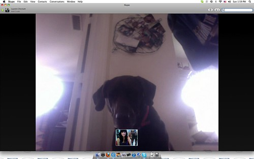 Skyping with Bueller