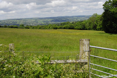 Not Much Further to Hay-on-Wye