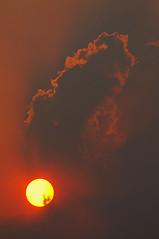 Forest Fire Sunset