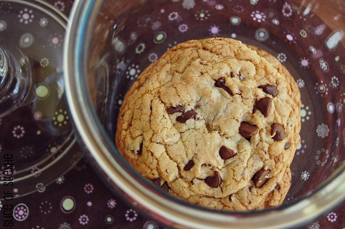 """""""perfect"""" chocolate chip cookies"""