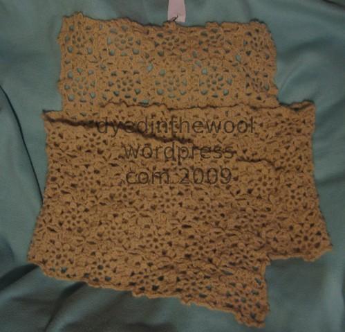 raeanneshawlsweater1 (by dyedinthewool)
