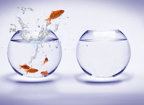 fishbowl jump by Kay Kim(김기웅), on Flickr