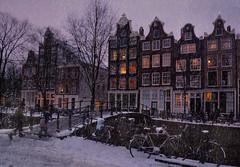 Let it snow in the Amsterdam (Bn) Tags: snow night snowflakes topf50 bravo jardin topf300 topf100 500faves topf200 jordaan tms sneeuwvlokken topf400 topf500 pittoresk tellmeastory heavysnowfall topf700 topf600 100faves 50faves topf800 200faves topf900 winteravond galleryphotos 300faves cornelisjetses dreamingofawhitechristmas 400faves 600faves 900faves 700faves winterinamsterdam 800faves galleryphoto verlichteramen huffstuttersfavorite hetisstilinamsterdam 20december2009 winterinthejordaan cosychristmasspirit strollinginasnowyamsterdam beginvanherengracht lightsatthewindows antonpiecksfeertje thenightfallsdowntownamsterdam happywintertimeinamsterdam deavondvaltindejordaan awintryviewofthebrouwersgrachtamsterdam desneeuwvaltopdedaken winterinmokum magicalwinterscene christmastreeinthewindow brouwersgrachtindewinter sneeuwvalvanzon15cm sneeuwplezierenoverlast cosychristmasinamsterdam gezelligewintertafereelindejordaan letitsnowinamsterdam kerstsfeerinamsterdam deavondvaltinhartjeamsterdam winternightinamsterdam xmasinamsterdam snowflakesfallontherooftop