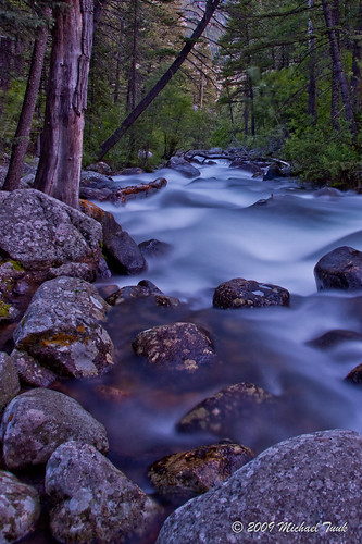 Woodbine Creek #3