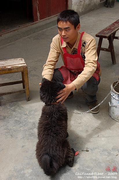 西藏林芝水果攤10.JPG