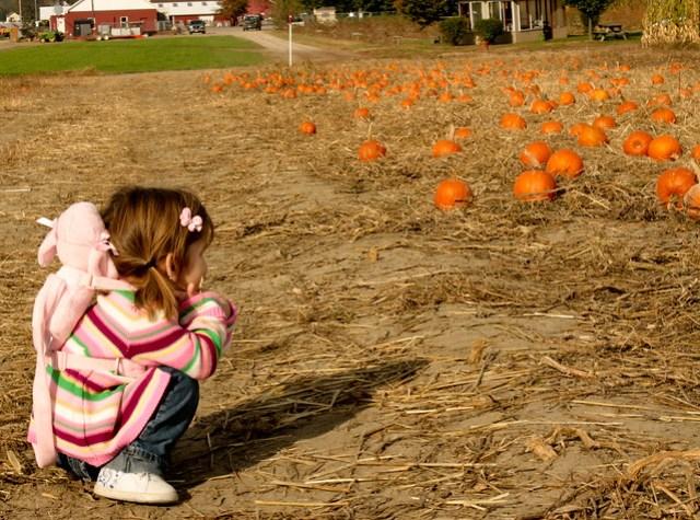 pumpkin patch (1 of 1)-26