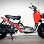 50 Cc Ruckus Adventure Rider