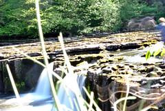 Aysgarth Falls 9