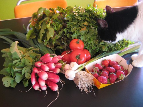 Amelis'Hof organic vegetables week 22, 2011