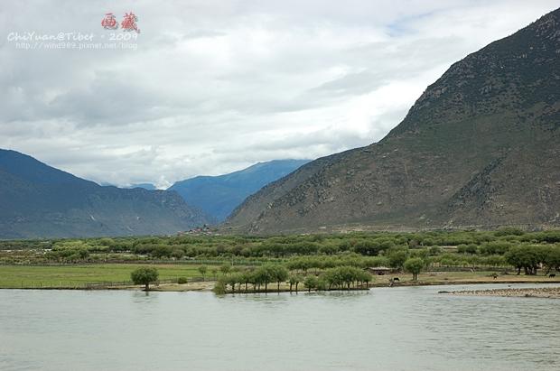 西藏林芝江河匯合處07.JPG