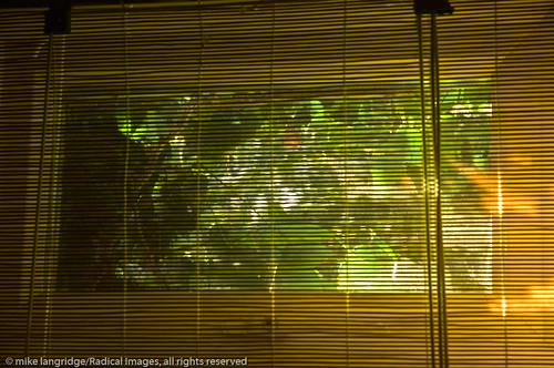 Patterns of sunlight _G201264