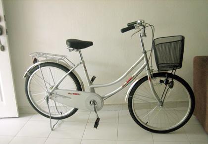 my new $100 bike