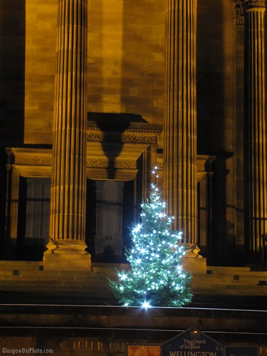 Wellington Church Christmas Tree