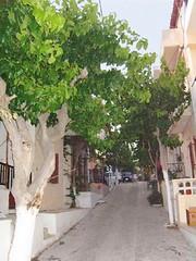 Myrtos village road