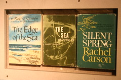 Rachel Carson: The Edge of the Sea, The Sea Ar...